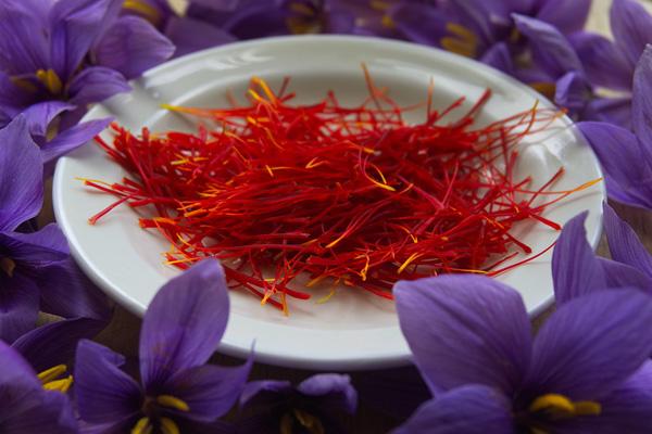 about Saffron